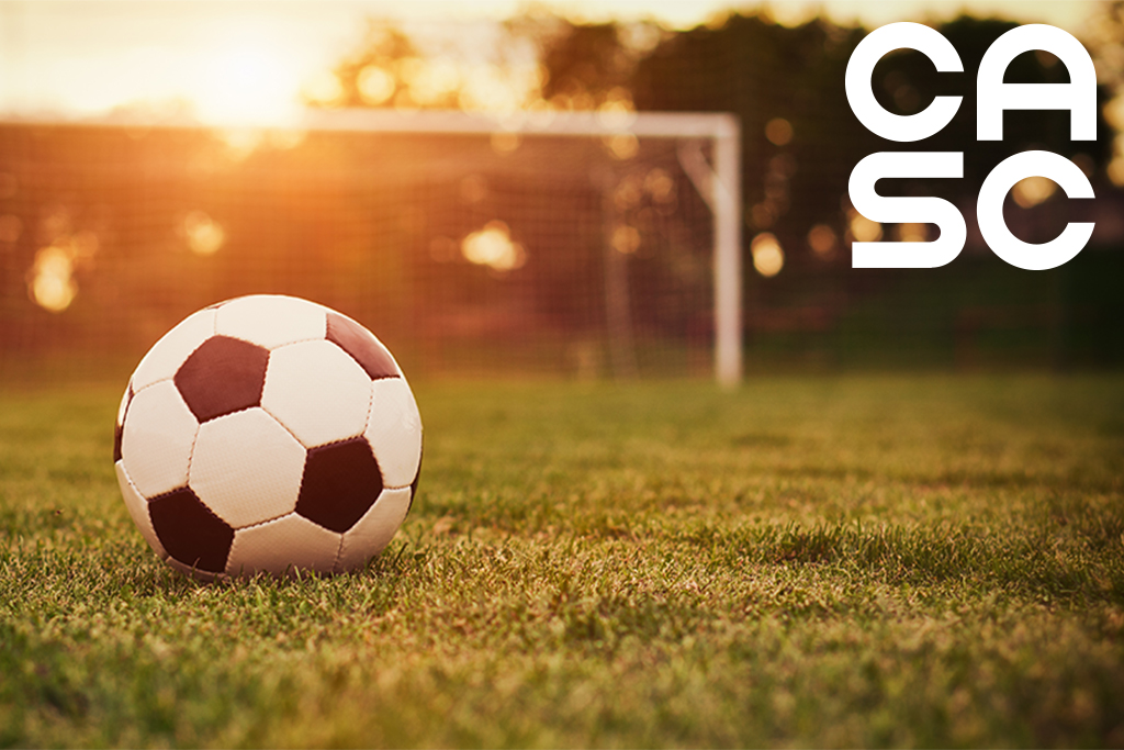 image of soccer ball on field